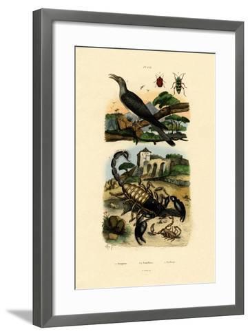 Scorpions, 1833-39--Framed Art Print
