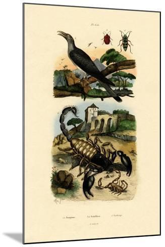 Scorpions, 1833-39--Mounted Giclee Print