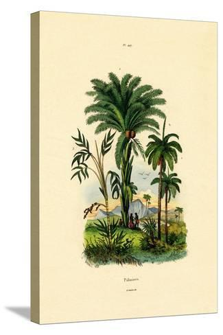 Palm Trees, 1833-39--Stretched Canvas Print
