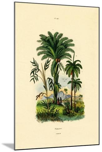 Palm Trees, 1833-39--Mounted Giclee Print