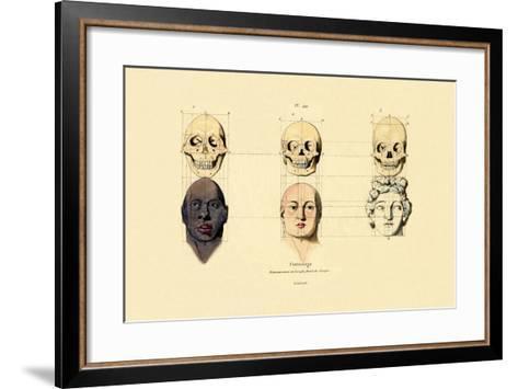 Phrenology, 1833-39--Framed Art Print