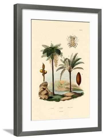 Tree Fern, 1833-39--Framed Art Print