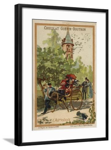 Ostrich Cart--Framed Art Print