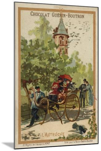 Ostrich Cart--Mounted Giclee Print