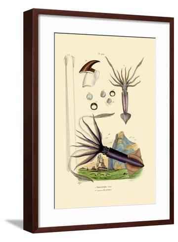 Giant Squid, 1833-39--Framed Art Print