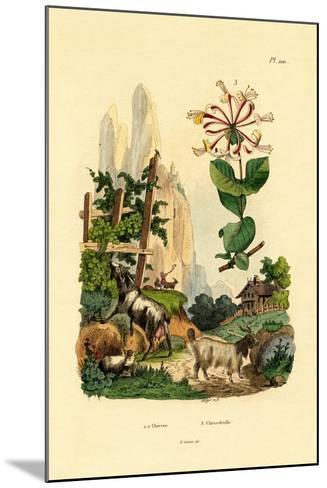 Goats, 1833-39--Mounted Giclee Print