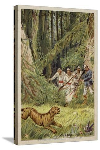 Tiger Hunting--Stretched Canvas Print