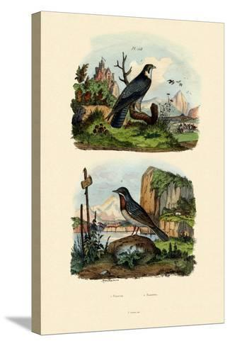 Falcon, 1833-39--Stretched Canvas Print