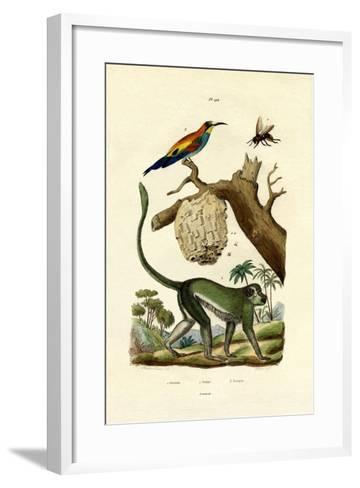 Guenon, 1833-39--Framed Art Print