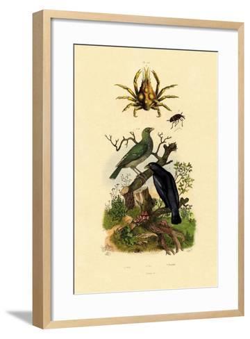 Oriol, 1833-39--Framed Art Print