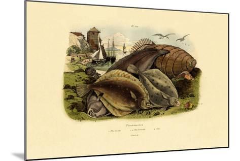 Dab, 1833-39--Mounted Giclee Print