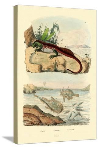 Basilisk, 1833-39--Stretched Canvas Print