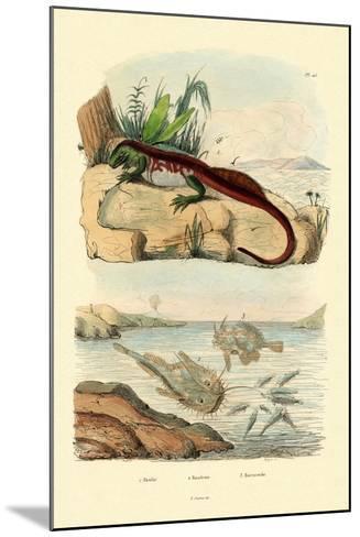 Basilisk, 1833-39--Mounted Giclee Print