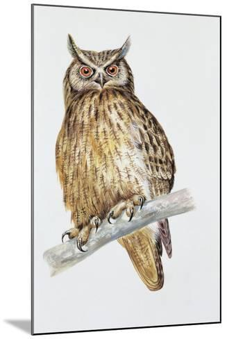 Close-Up of an Eurasian Eagle Owl Perching on the Branch (Bubo Bubo)--Mounted Giclee Print