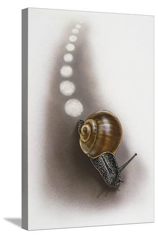 Snail Leaves Trail on Ground, Artwork by Robin Carter--Stretched Canvas Print