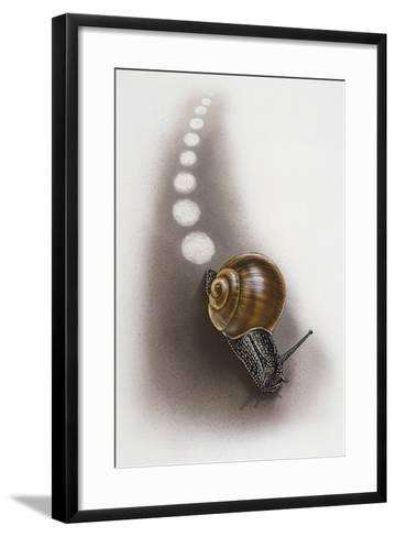 Snail Leaves Trail on Ground, Artwork by Robin Carter--Framed Art Print