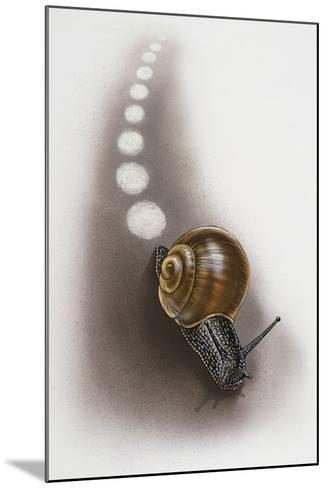 Snail Leaves Trail on Ground, Artwork by Robin Carter--Mounted Giclee Print