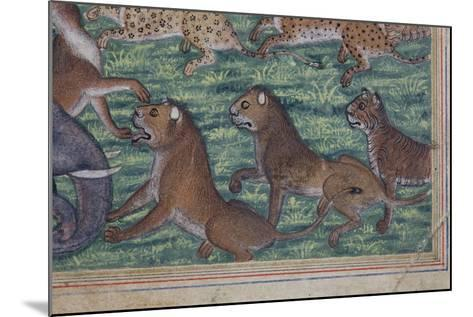 Detail from the Jackal Who Pronounced Himself King, C.1560-65--Mounted Giclee Print