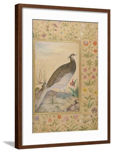 A Himalayan Cheer Pheasant, C.1620, Border C.1635--Framed Art Print