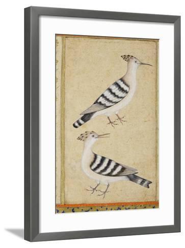 Hoopoes, C.1590--Framed Art Print