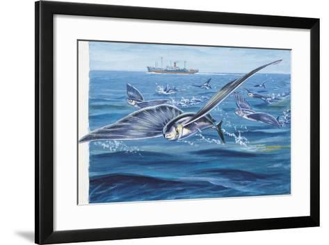 Flying Fishes Flying over a Sea (Cypselurus Heterurus)--Framed Art Print