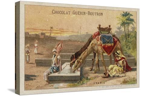 Arabia--Stretched Canvas Print
