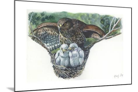 Common Buzzard Buteo Buteo at Nest with Young--Mounted Giclee Print