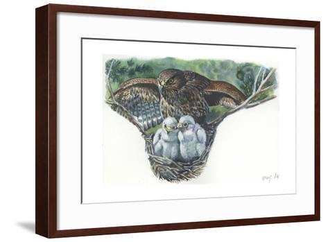 Common Buzzard Buteo Buteo at Nest with Young--Framed Art Print