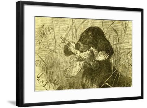 Dog Bird Hunt 1891, Austria--Framed Art Print