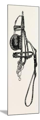 Silver Mounted Carriage Harness--Mounted Giclee Print