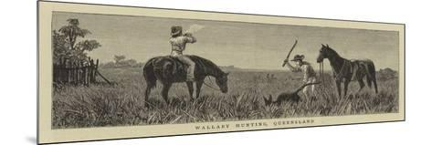 Wallaby Hunting, Queensland--Mounted Giclee Print