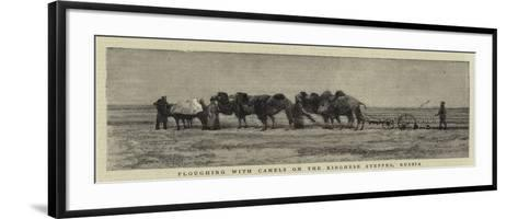 Ploughing with Camels on the Kirghese Steppes, Russia--Framed Art Print
