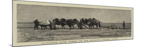 Ploughing with Camels on the Kirghese Steppes, Russia--Mounted Giclee Print