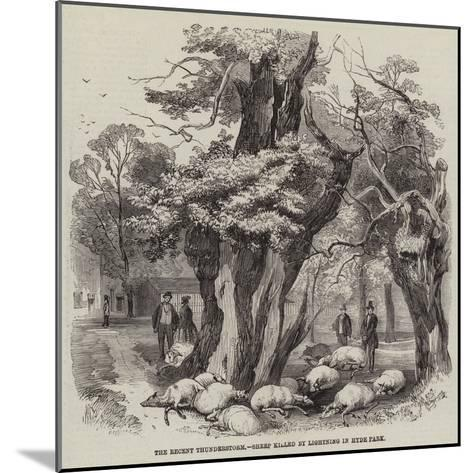 The Recent Thunderstorm, Sheep Killed by Lightning in Hyde Park--Mounted Giclee Print