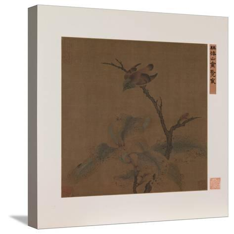 Bird on a Branch--Stretched Canvas Print