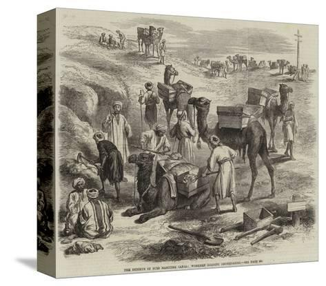 The Isthmus of Suez Maritime Canal, Workmen Loading Dromedaries--Stretched Canvas Print