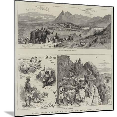 Horse, Camel, and Bullock Fair at Pokhar, Rajputana, India--Mounted Giclee Print