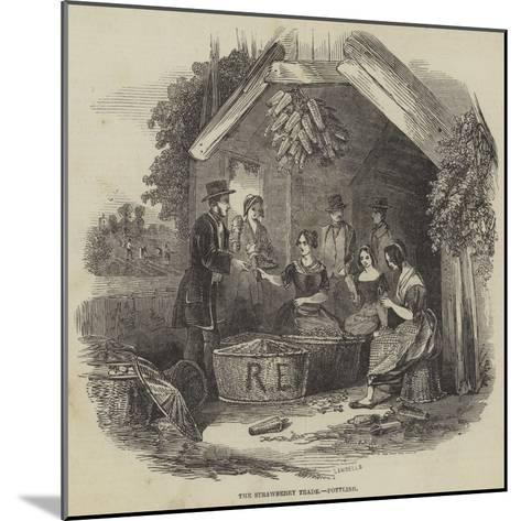 The Strawberry Trade, Pottling--Mounted Giclee Print
