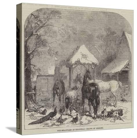 The Strawyard at Christmas--Stretched Canvas Print