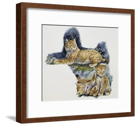 Eurasian Lynx Female (Lynx Lynx) and Her Cubs, Felidae--Framed Art Print