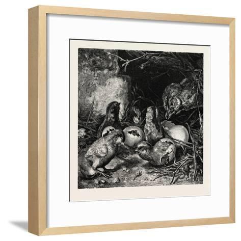 An Interesting Crisis--Framed Art Print