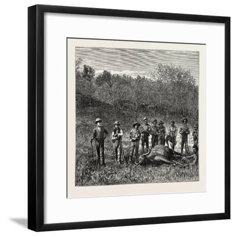 A Bullock Carriage in Cochin-China--Framed Art Print