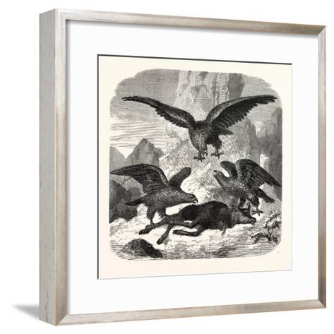 Eagles Fighting over a Chamois, Mountains, 1855--Framed Art Print