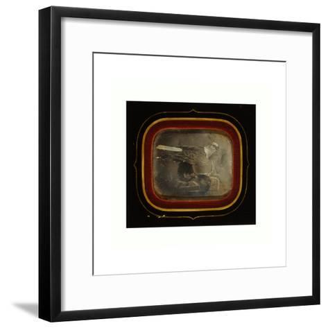 Stuffed Eagle in Independence Hall, Circa 1845--Framed Art Print