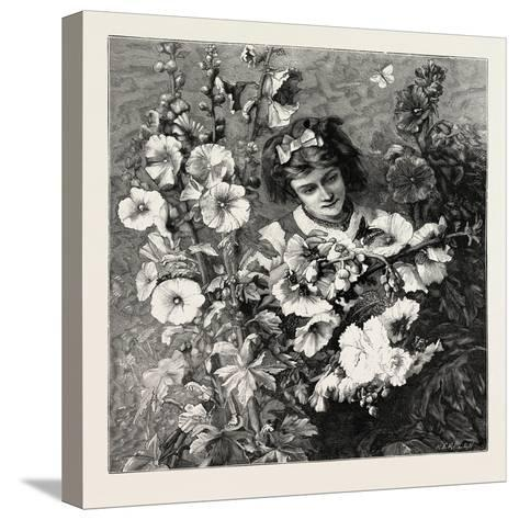 Girl Amongst Flowers, Fashion, 1882--Stretched Canvas Print