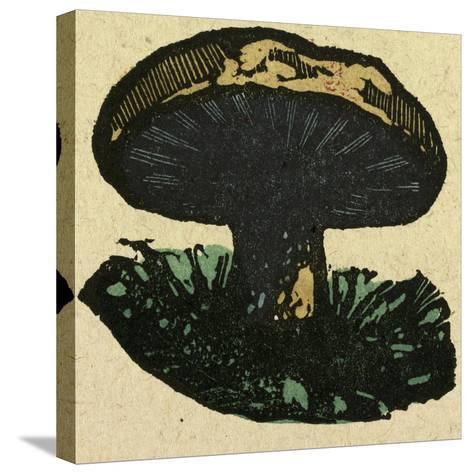 Illustration of English Tales Folk Tales and Ballads. a Mushroom--Stretched Canvas Print
