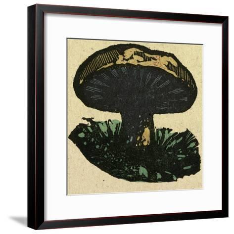 Illustration of English Tales Folk Tales and Ballads. a Mushroom--Framed Art Print