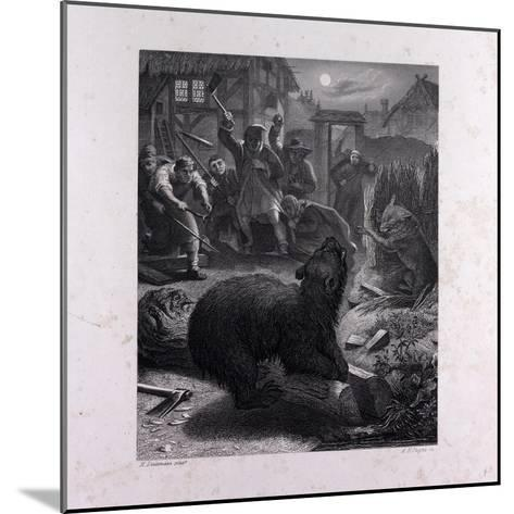 Bruin in the Trap--Mounted Giclee Print