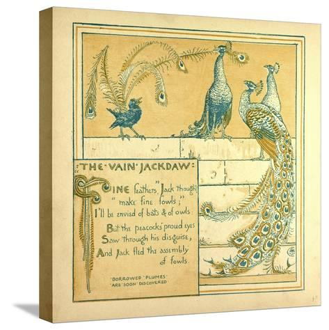 The Vain Jackdraw--Stretched Canvas Print