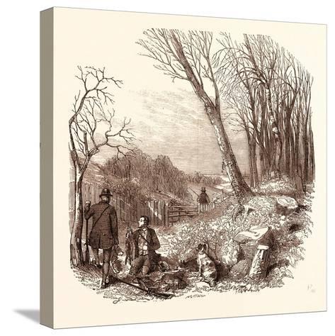 Rabbit Shooting, Rabbits--Stretched Canvas Print